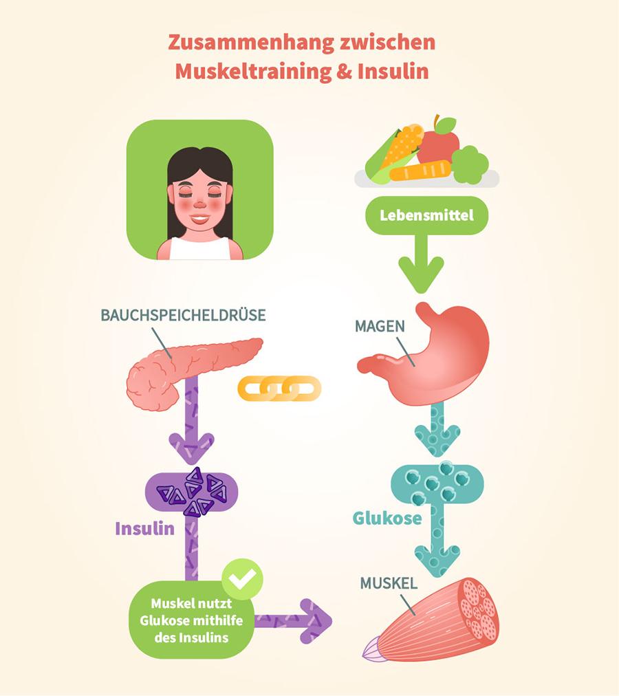 Am schnellsten in die Ketose - der Zusammenhang zwischen Insulin und Muskeltraining
