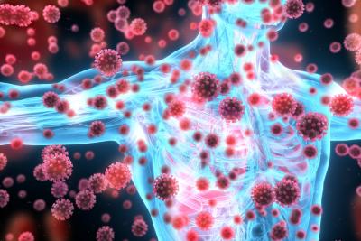 Keto und das Immunsystem